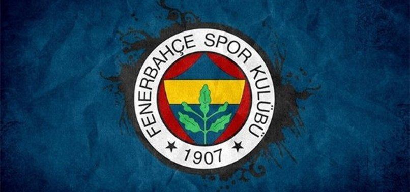 Fenerbahçe UEFA Avrupa Ligi D Grubu'nda kaçıncı sırada?